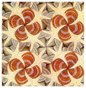M. C. Escher's Shells and Starfish